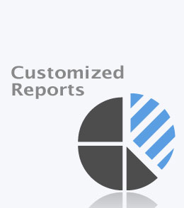 customized-reports-v1