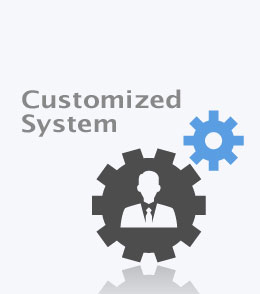customized-system-v1